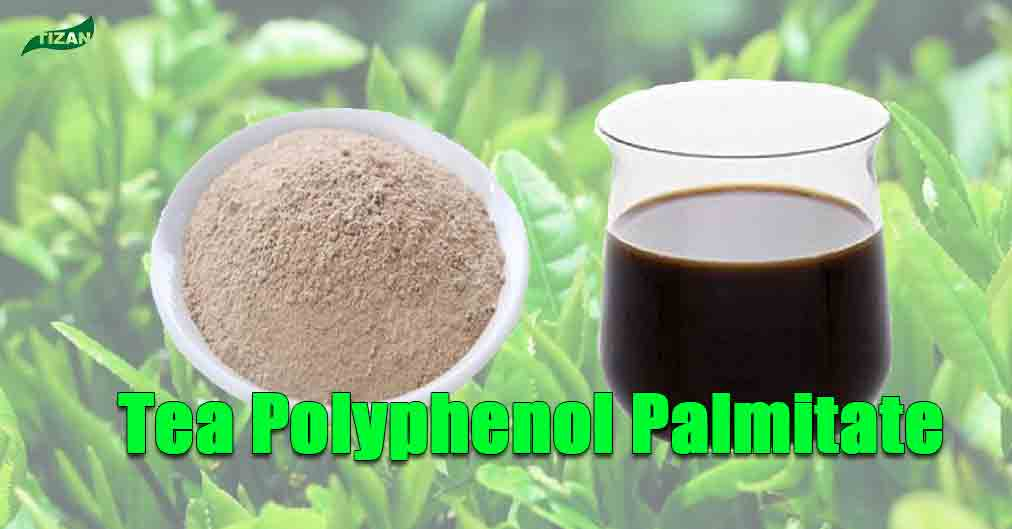 Tea-Polyphenol-Palmitate