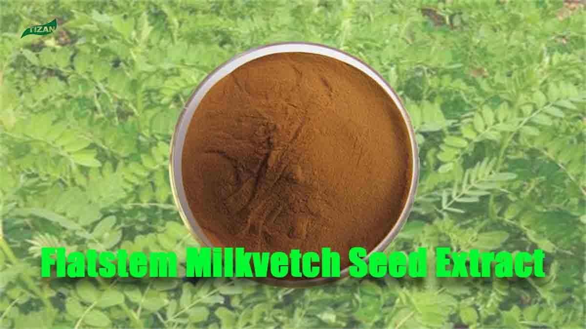 Flatstem Milkvetch Seed Extract